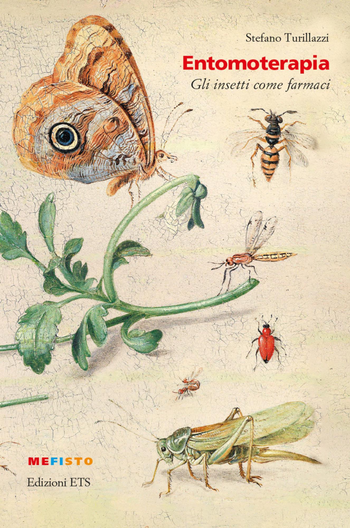 Entomoterapia.Gli insetti come farmaci