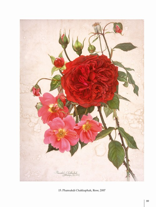 2/ - Arte botanica nel terzo Millennio. Botanical Art into the third Millennium <br>catalogo