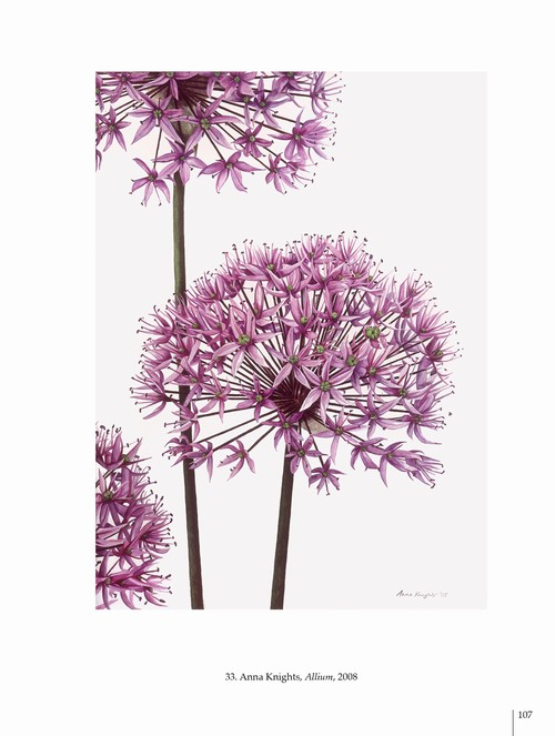 5/ - Arte botanica nel terzo Millennio. Botanical Art into the third Millennium <br>catalogo